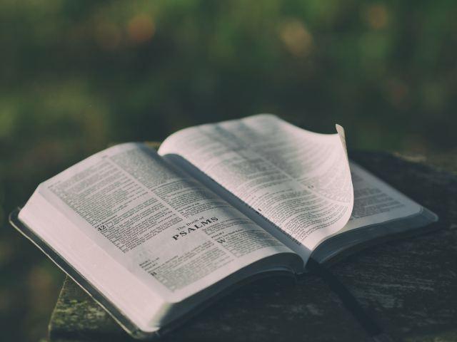 Opened_Bible.jpg