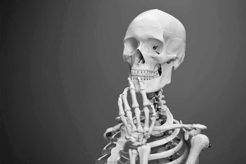 Jacob's Bones